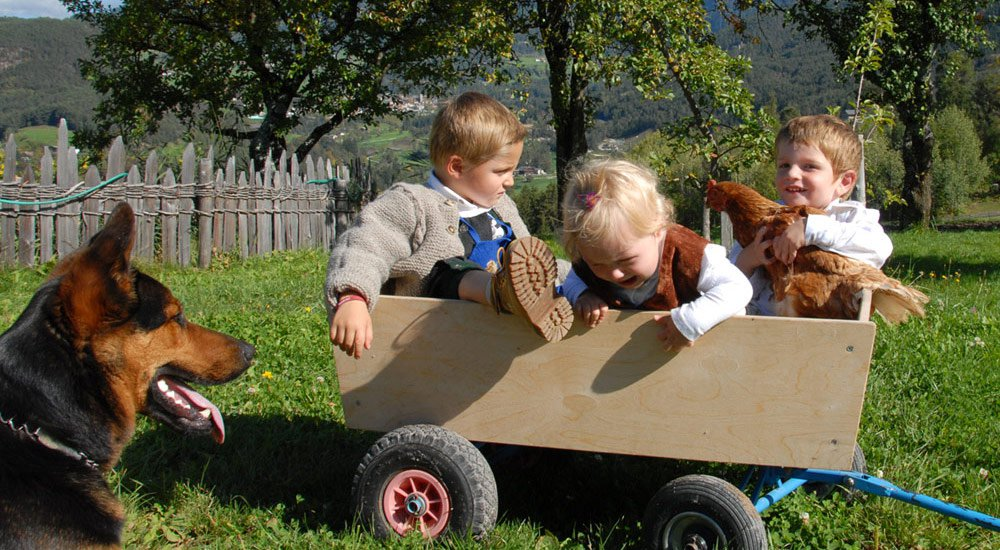 """Things to experience at the farm – Leisure time in """"Völs am Schlern"""""""
